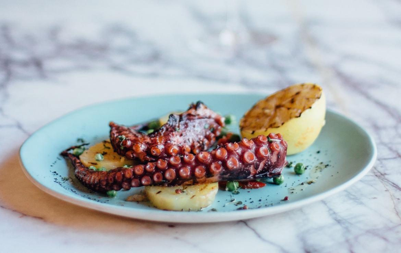 Octopus Braised in Wine