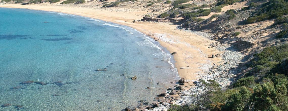 Lara Beach, пляж Лара в Полисе