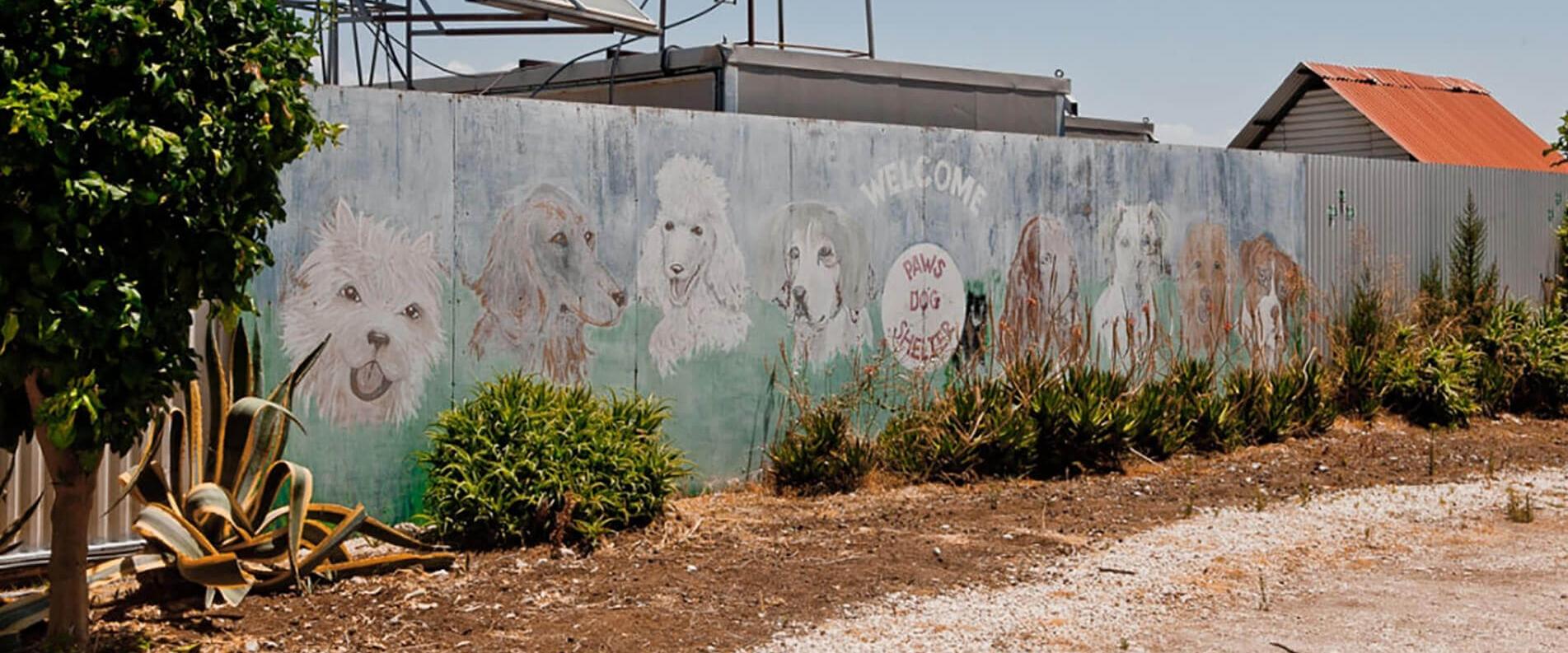 Собачья история